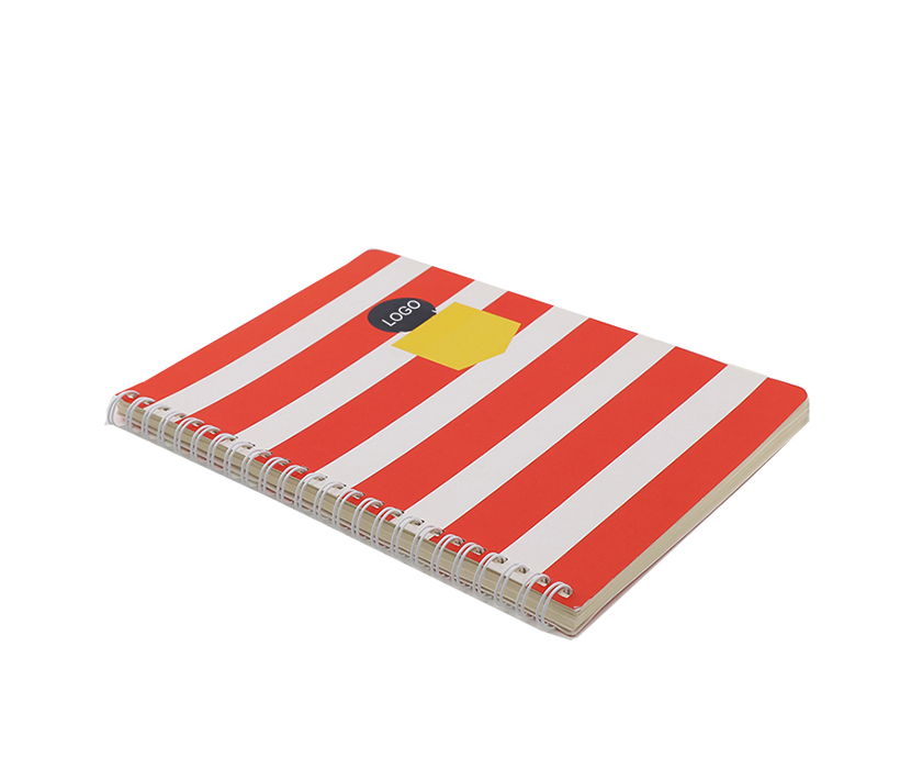 Wholesale Cheap Spiral School Notebook